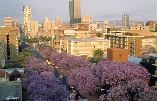 Pretoria_City-view_2242